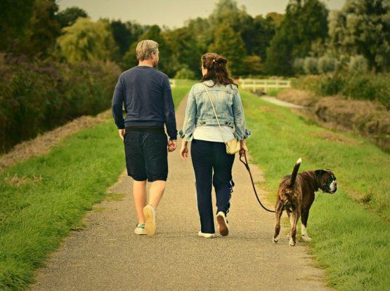 Man and woman walk dog