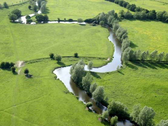 Aerial view of winding river